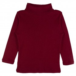 Boy Turtle Neck Top in Red