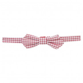 White & Blue checked bow tie